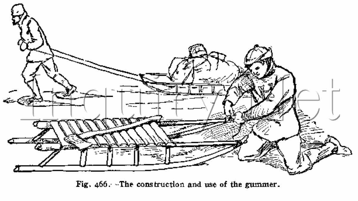 sleds,sleighs,toboggan,free woodworking plans,diy projects