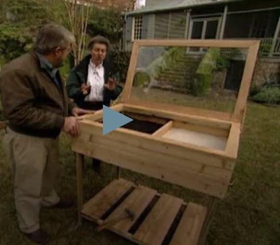 Learn how to Build Your Own Cold Frame.