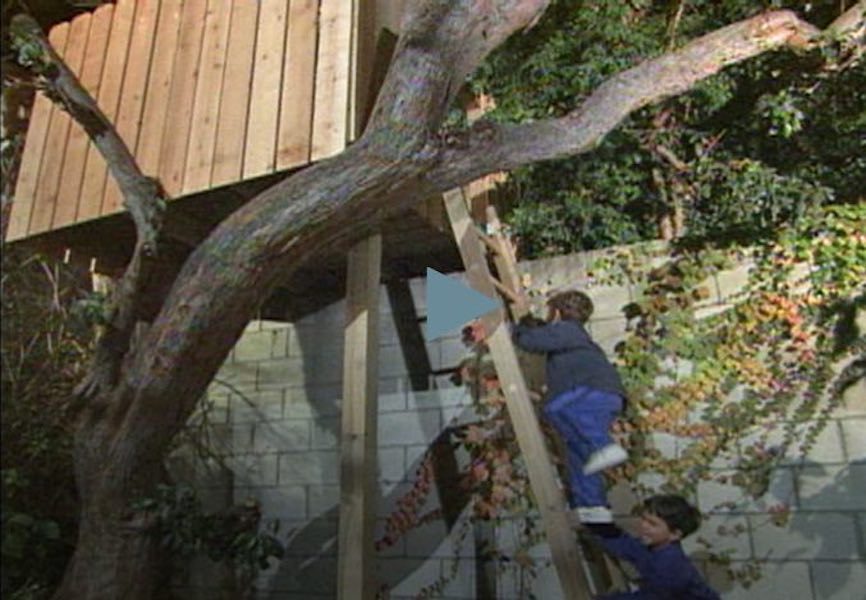 Learn how to Build a Tree House.