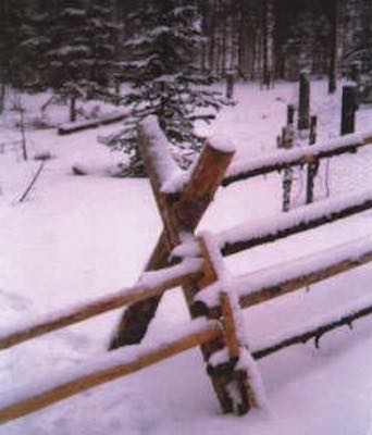 Build a Jackleg Fence using these free instructions.