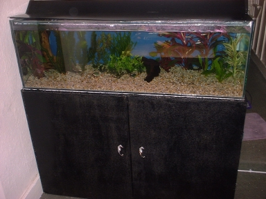 Aquarium Cabinet