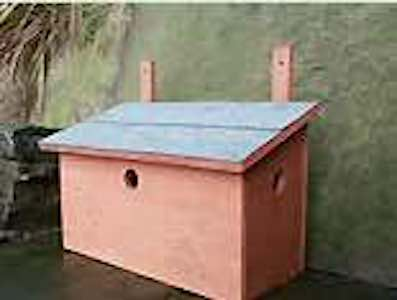 Build a Birdhouse for House Sparrow.