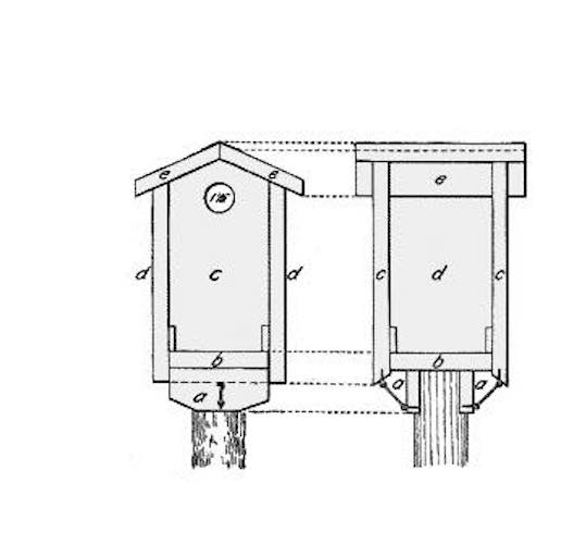 Free plans to build your own Bluebird Birdhouse.