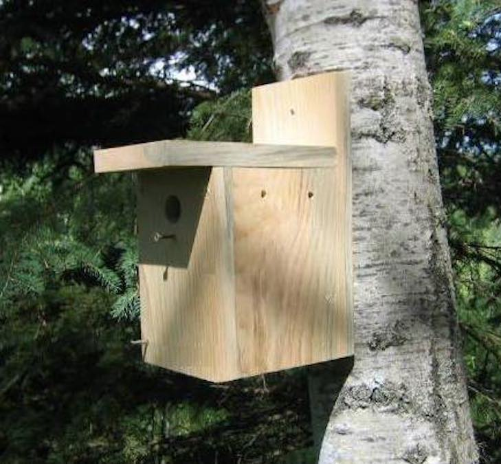 Free woodworking plans to build a Birdhouse.