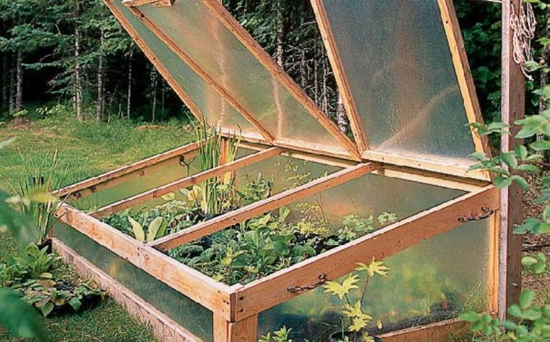 Free plans to build a Sunset Cold Frame.