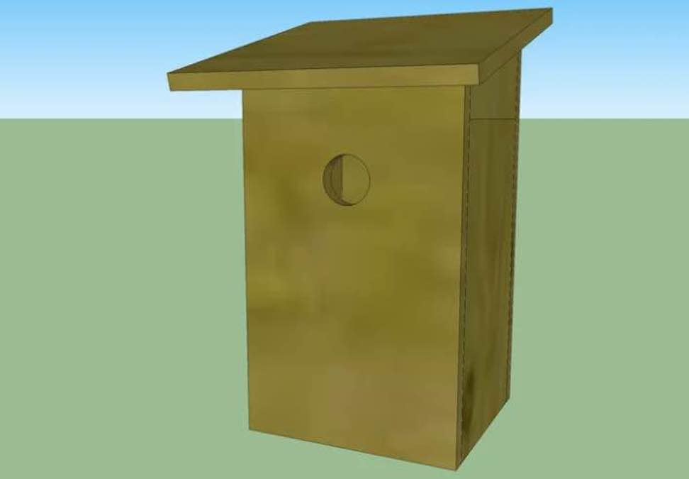 Free plans to build a Tree Swallow Nest Box.
