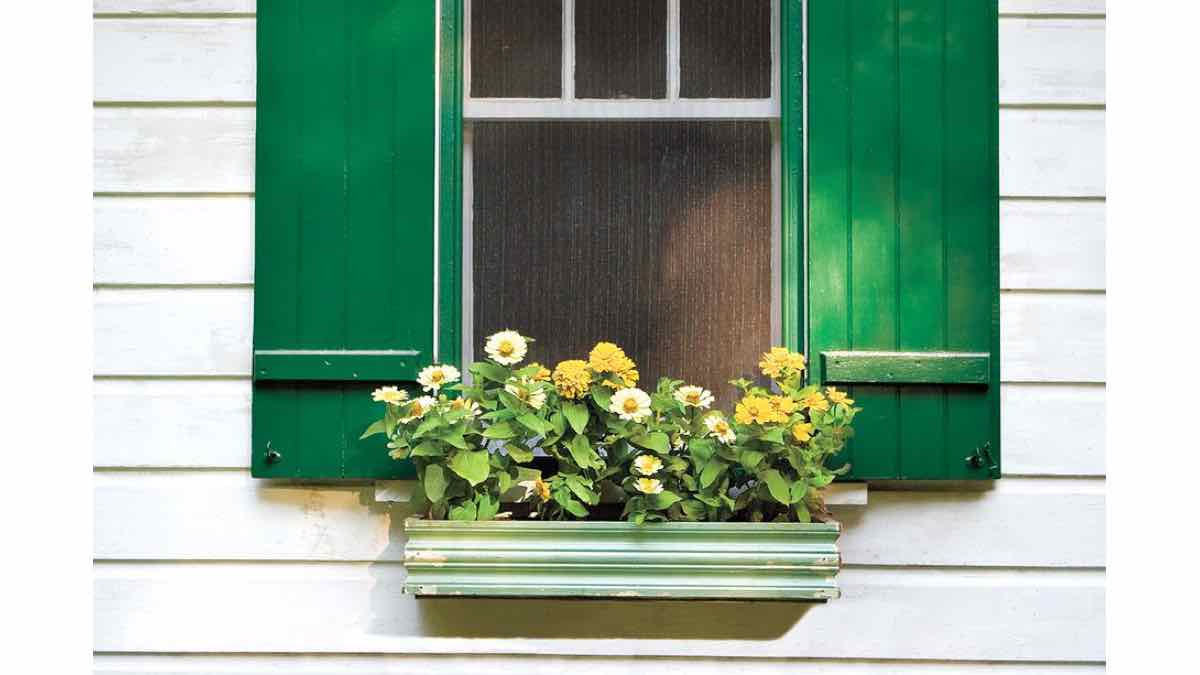 window boxes,outdoors,flower boxes,free woodworking plans,projects,do it yourself,woodworkers