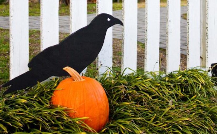 How to build a Raven Halloween Yard Art free project