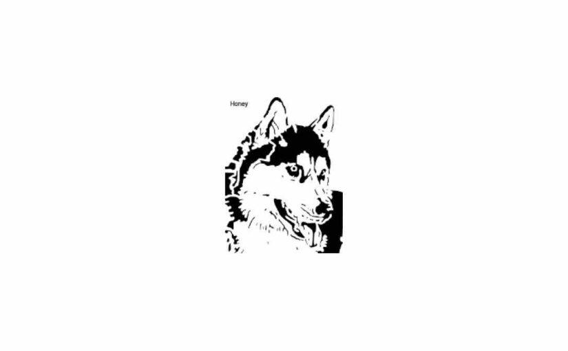 Husky Scrolling Pattern