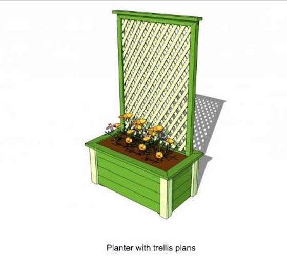 Build a Planter with Trellis using free plans.