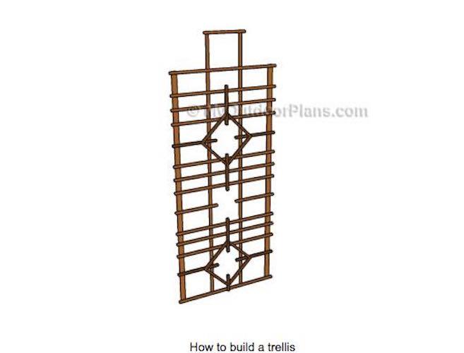 Free plans to Build A Trellis.