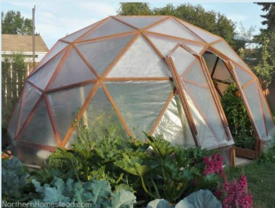 Free plans to build a Geodome Greenhouse.