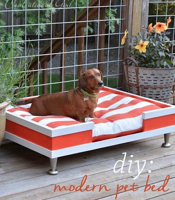 Build a Dog Bed using free plans.