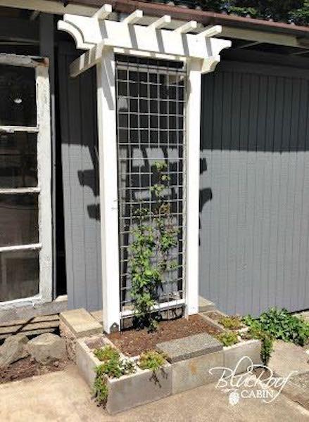 Free plans to build a DIY Garden Trellis.