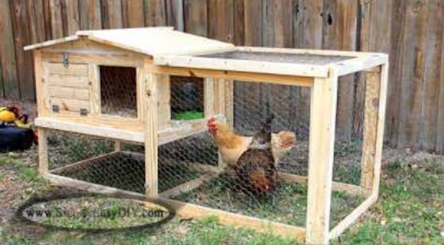Build an Outdoor Chicken Coop using free plans.