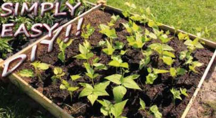 Free plans to build a Simply Easy DIY Raised Garden Bed.