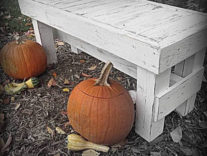 Free instructions to build a Rustic Bench.