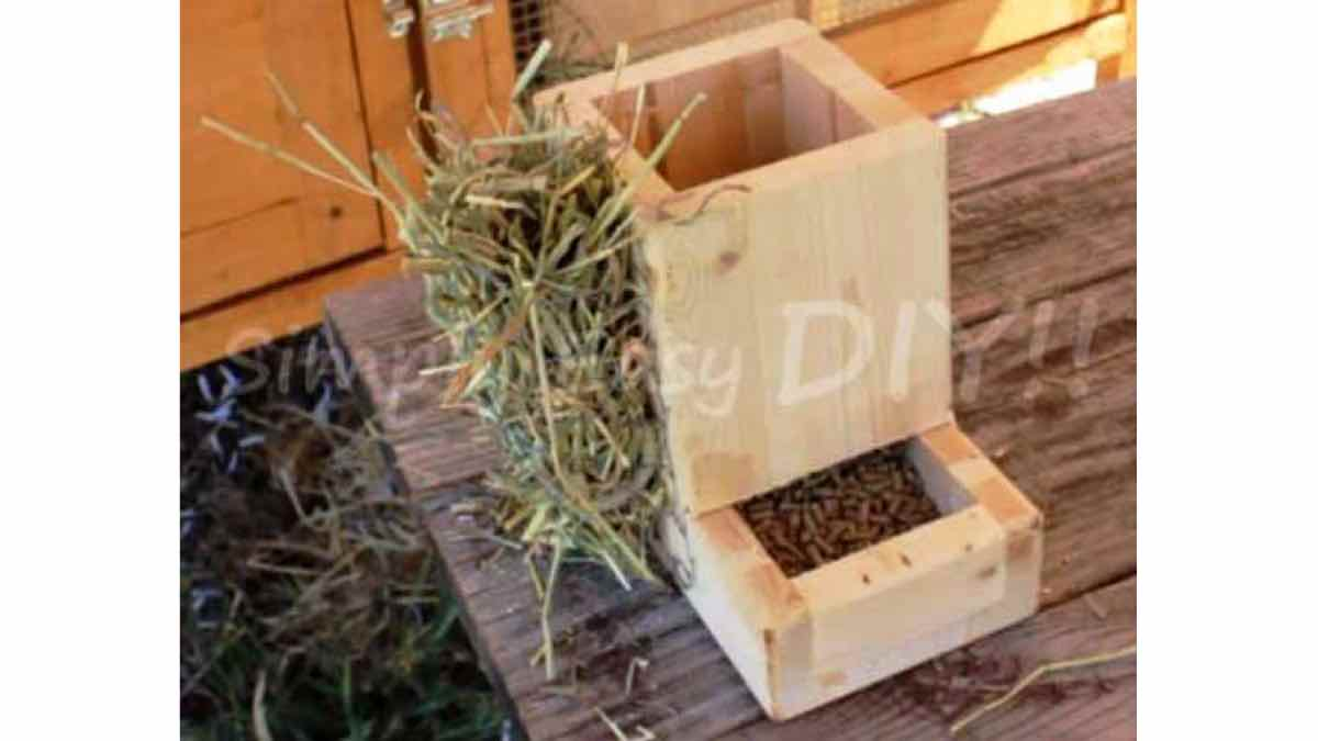 rabbit feeders,diy,free woodworking plans,free projects,do it yourself