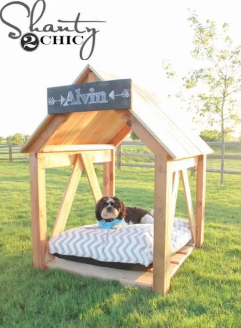 Build a Dog House/Shelter using free plans.