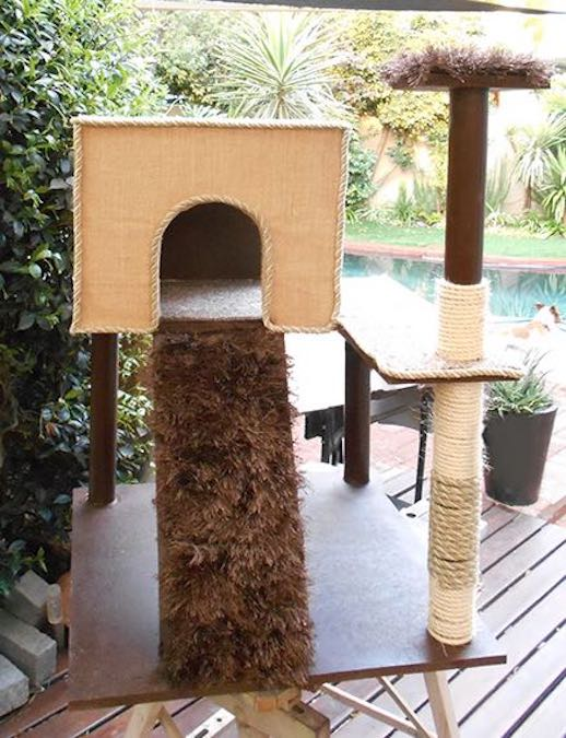 Build a Cat Play Stand using free plans.