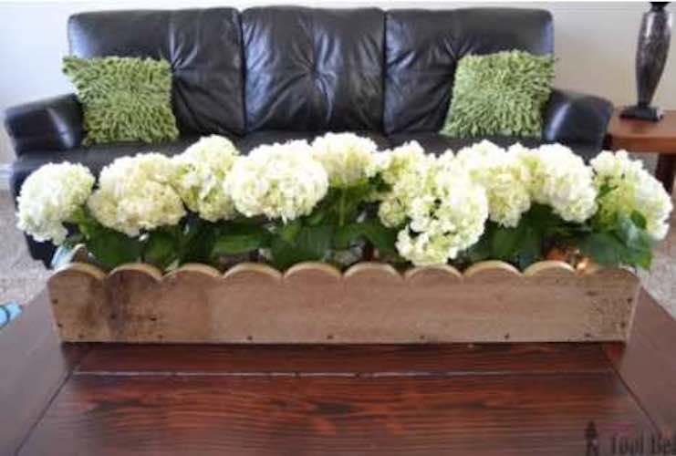 Learn how to build a Scalloped Box Centerpiece using free plans.