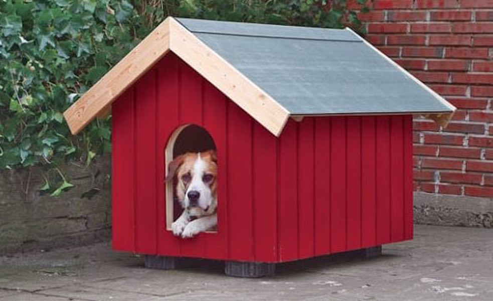 Build an Insulated Dog House using free plans.