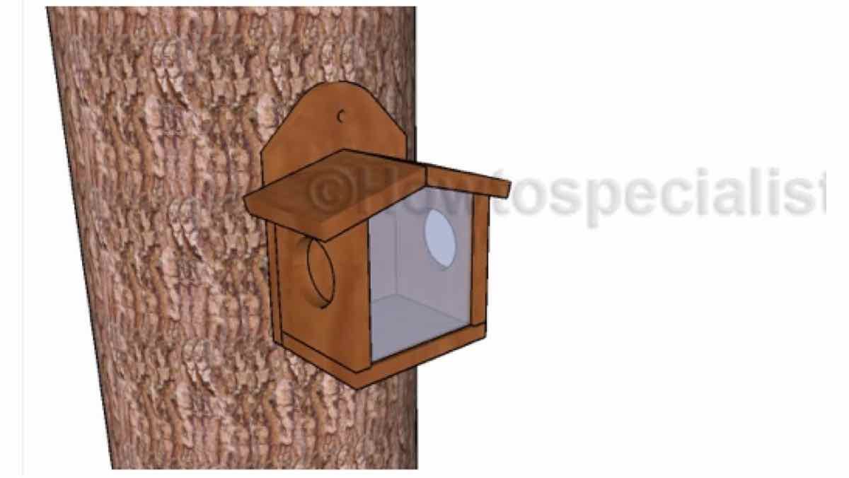 squirrel feeders,diy,free woodworking plans,free projects,do it yourself