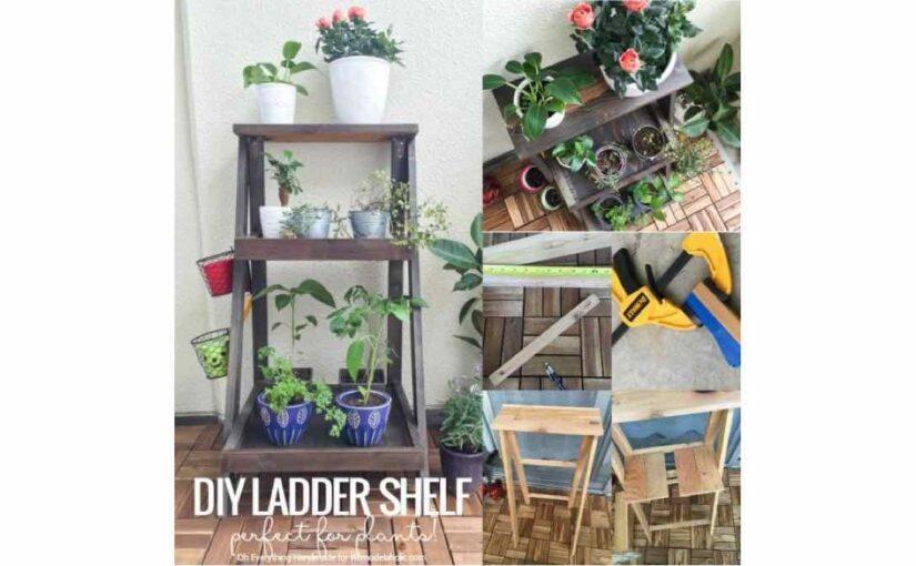 Plant Ladder Shelf PDF