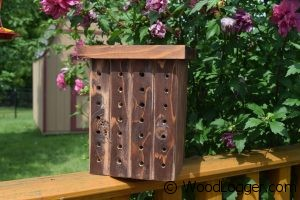 Free woodworking plans to build a Bee House.