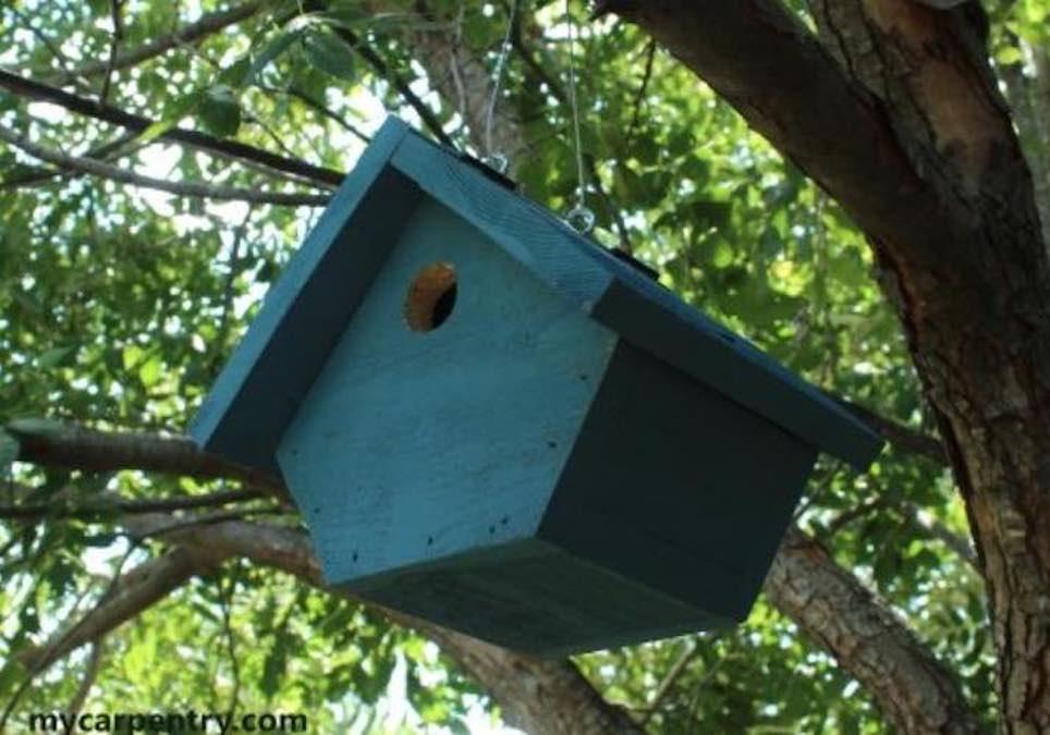 Free plans to build a Wren Birdhouse.