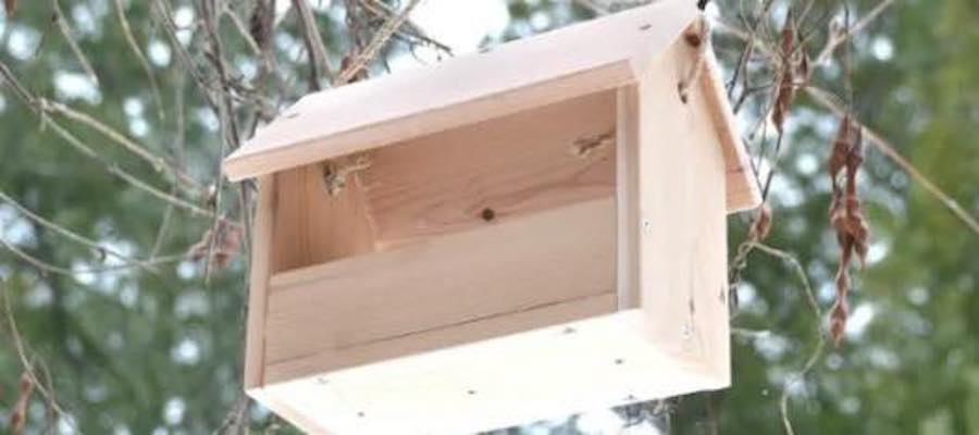 Free plans to make a simple Bird Feeder.