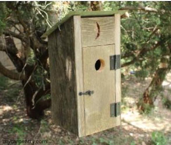 Build a fun Outhouse Birdhouse.