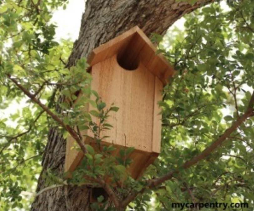 Free plans to build an Owl House.