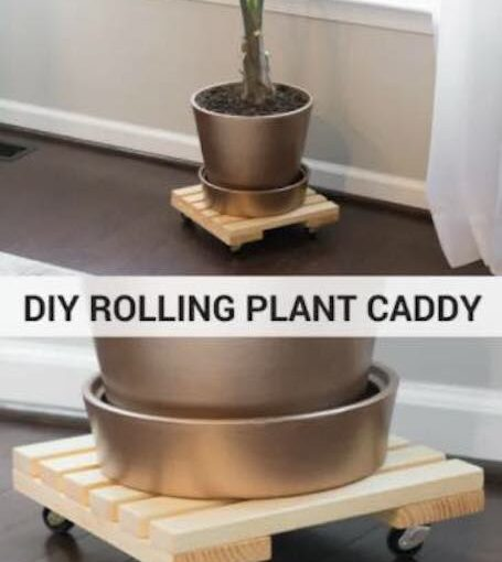 Build a Plant Caddy using free plans and scrap wood.