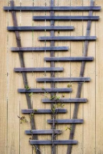Free plans to Build Your Own Garden Trellis.