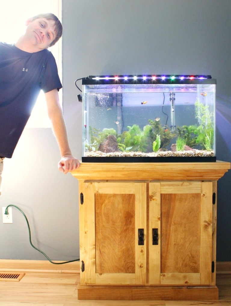 Build an aquarium stand using these free plans.
