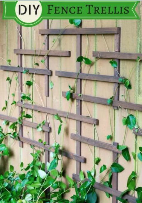 Free plans to build a DIY Fence Trellis.