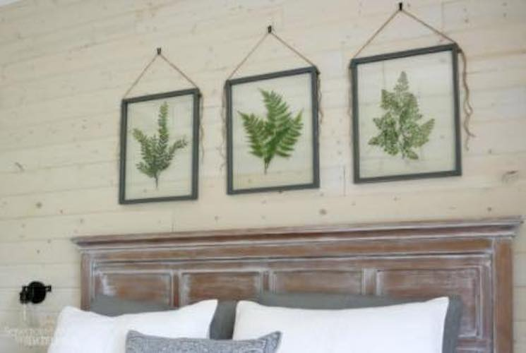 Build a Pressed Plant Frame using free plans.