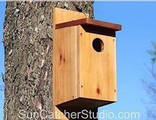 Build a Basic Birdhouse with free plans.