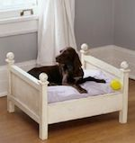 dog bed,pet bed,cat bed,diy,free woodworking plans,free projects,do it yourself