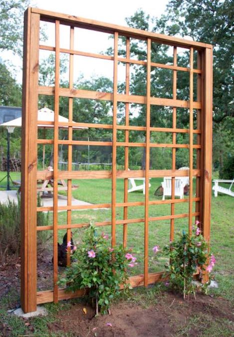 Free plans to build a Modern Garden Trellis.