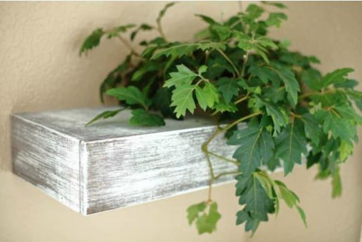 Free plans to build a Floating Plant Shelf.