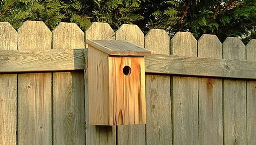 Learn how to Build a Basic Birdhouse.