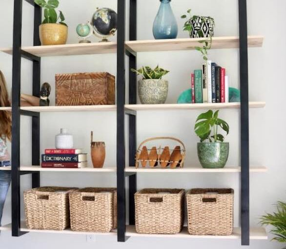 Floating Ladder Shelves