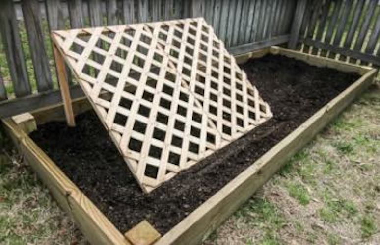 Raised Planter with Cucumber Trellis