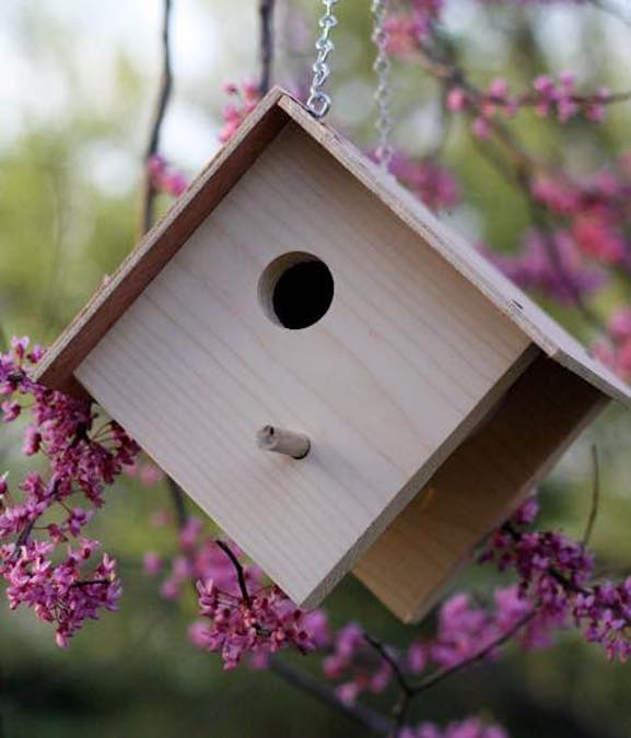 Learn how to build a Basic Birdhouse with free plans.