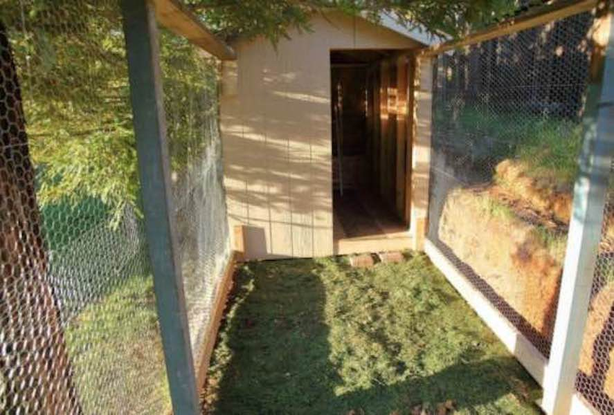 Free plans to build a Chicken Coop.