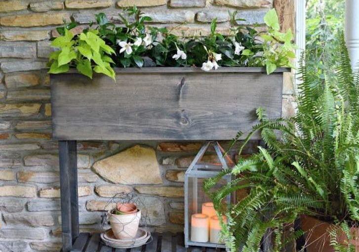 Raised Planter Box