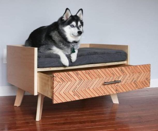 Dog Bed with Storage Drawer