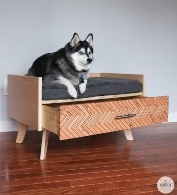 Build a Dog Bed with Storage Drawer with free plans.